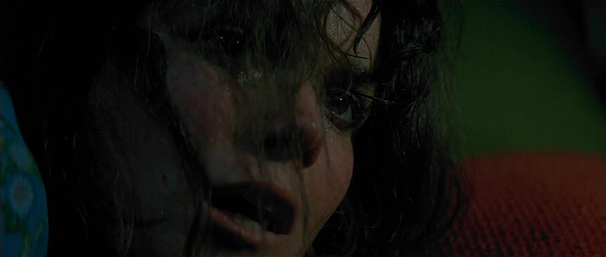 Barbara Hershey - The Entity (1982)