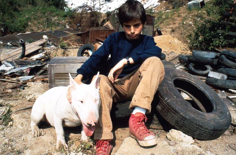 Baxter (1989) - François Driancourt